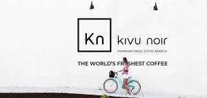 WebWiser Kivu noir